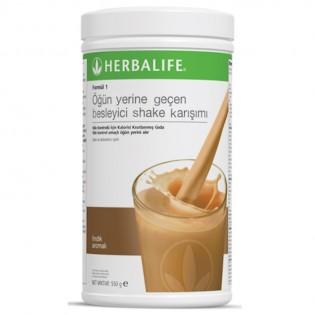 Besleyici shake karışımı Formül 1 Fındık 550g
